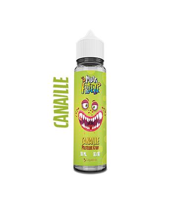 Liquideo - Pasteque Kiwi - 50ml Overdosed